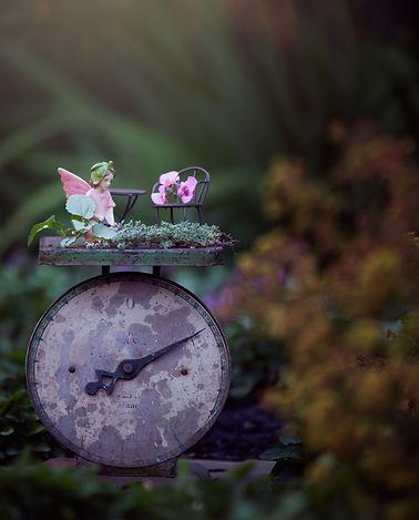 catching fairies_rosa_veldkamp-1.jpg