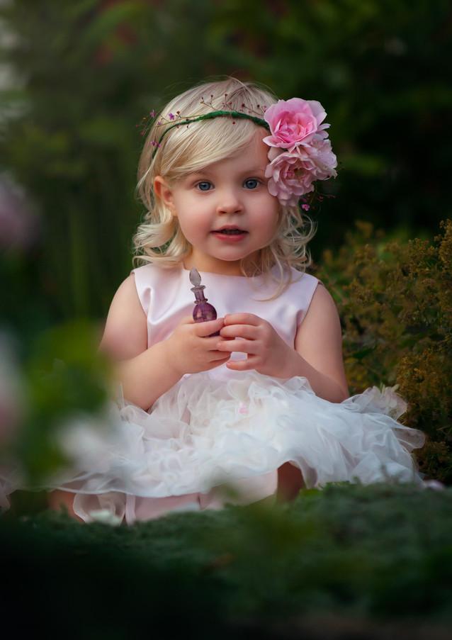 pink A in the garden-Rosa_veldkamp-1.jpg