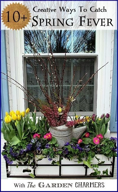 Spring Inspiration in the Midst of a Deep Freeze.