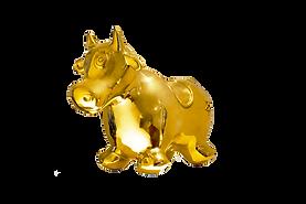 bezerro de ouro edu de barros 2020 cropp