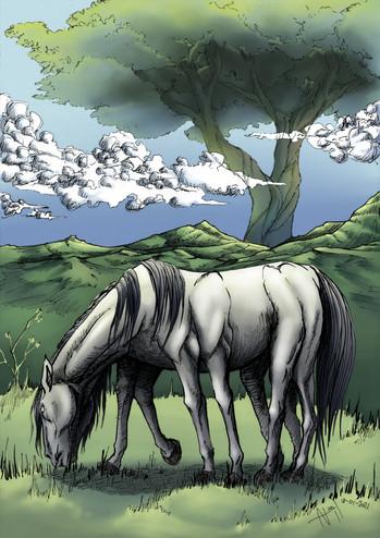Odin´s horse