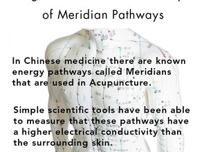 Higher Electrical Conductivity of Meridian Pathways