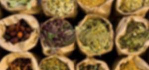 medicinal-herbs_edited.jpg