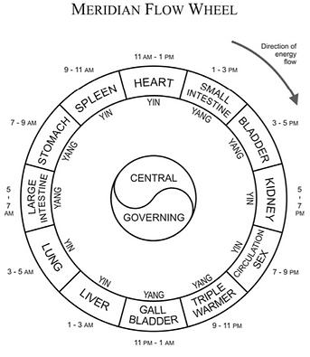 meridian-flow-wheel_edited.png