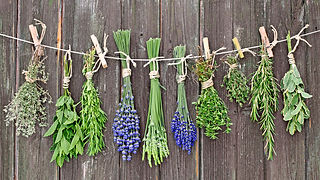 using-herbs-to-cook.jpg