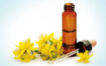 bach-flower-remedies-flowers-that-heal.j