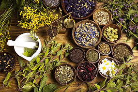 dried-herbs-1200x800.png