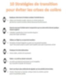 Transition Strategies FR.jpg