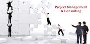 Project Management consulting.jpg