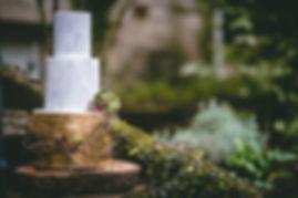 cake&succulents1.jpg