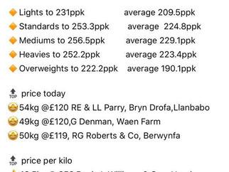 Oxford Down lambs top Ruthin at £120