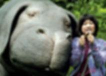 Okja-Pic.jpg