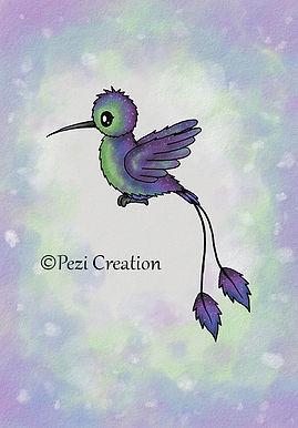 kolibri aqua wz neu.jpg