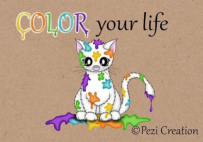 cat color yourlife wz.jpg