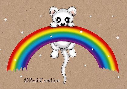 rainbow maus wz.jpg