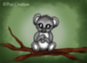 koala wz.jpg