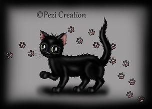 black cat wz.jpg