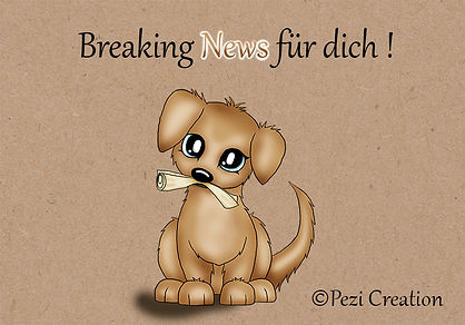 breaking news wz.jpg