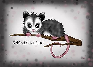 opossom wz.jpg