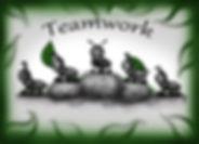 ameisen teamwork.jpg