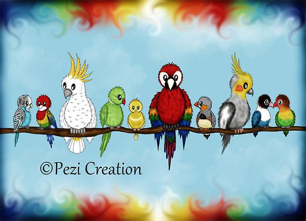 vögel bunt wz.jpg