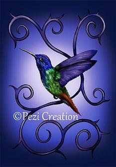 hummingbird wz.jpg
