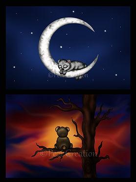 teddy night sunset WZ.jpg