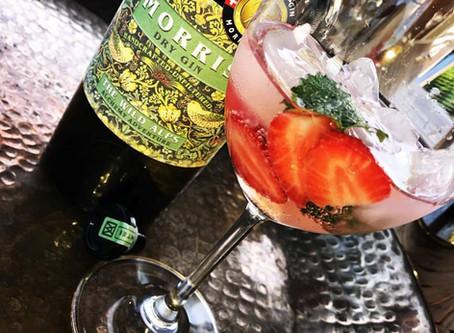 """""""Trinkprotokoll""""-Blog: Fruchtbrenner wollen's wissen"""
