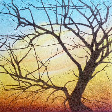 Improbable Dreams of a Tree