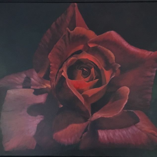 Black Tea Rose by Virginia Bittler