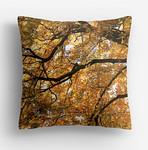 Autumn Tree, North Devon, Pillow by Russ