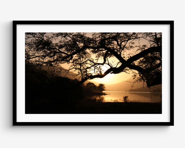 Tree lined Loch , Scotland Framed Pictur