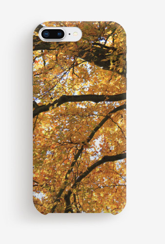Autumn Tree, North Devon, Phone Cover by
