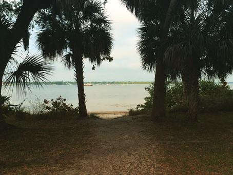 Florida Wild Writers, Workshop #1 Recap