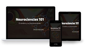 neurociencia101 final.jpg