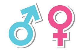 El feminismo no es lo contrario al machismo