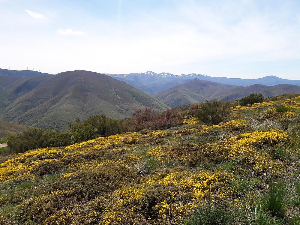 Camino de Santiago - descending to El Acebo