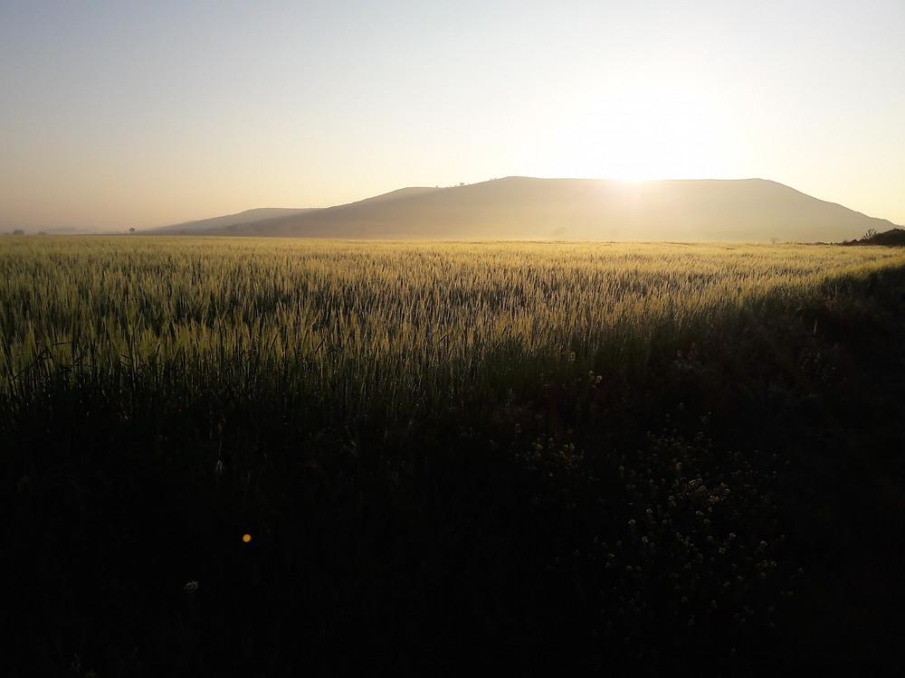 Camino de Santiago - Castrojeriz