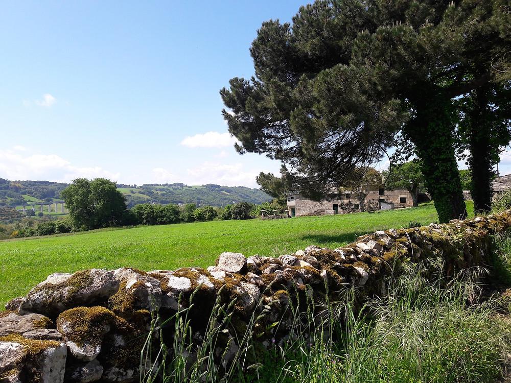 Camino de Santiago - Galicia