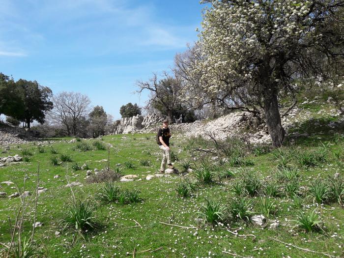 Jabal Moussa - Welcome to the Garden of Eden