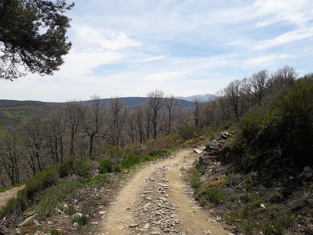 Camino de Santiago - to El Acebo