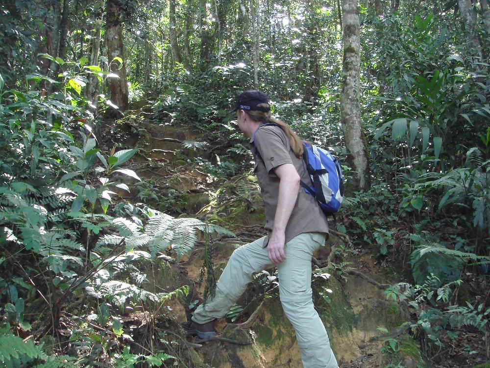 Cameron Highlands Malaysia hiking trail