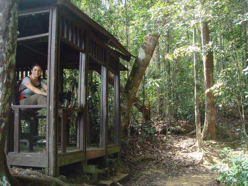 Taman Negara Malaysia Bukit Beresek
