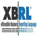 XBRL.jpg