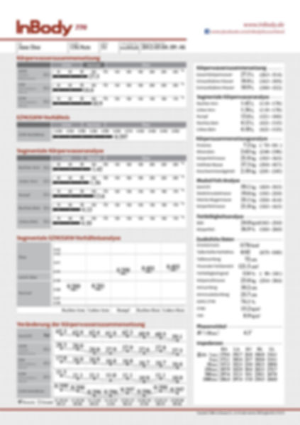 Befundbogen-InBody770-2.jpg