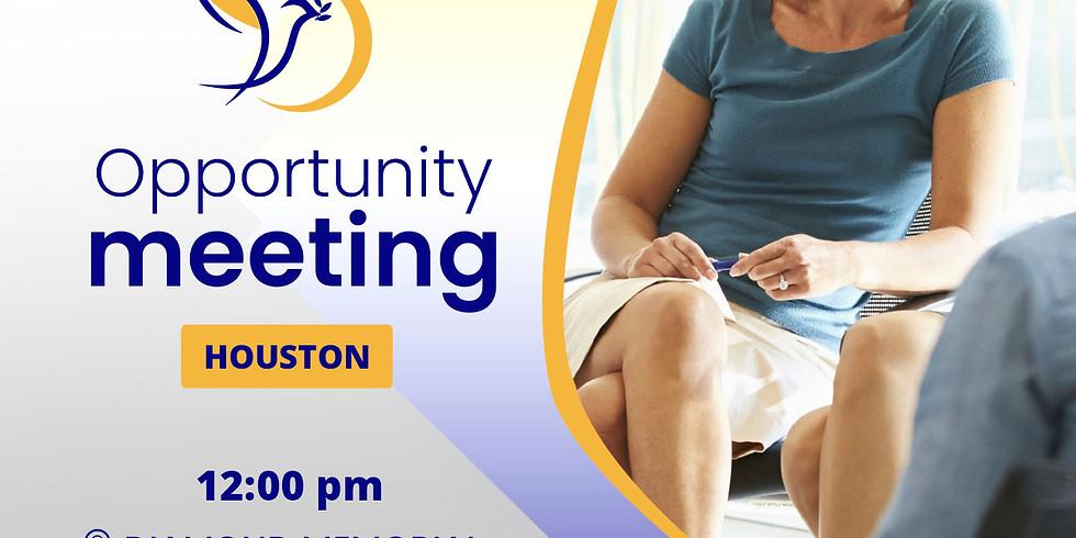 Opportunity Meeting Houston