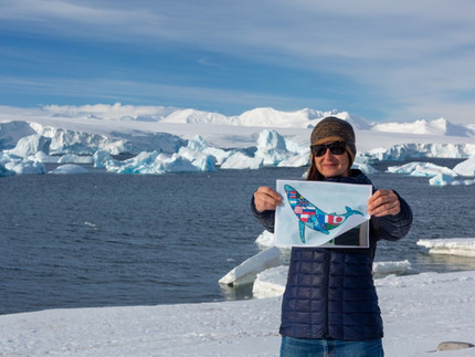 First Pilton flag reaches Antarctica