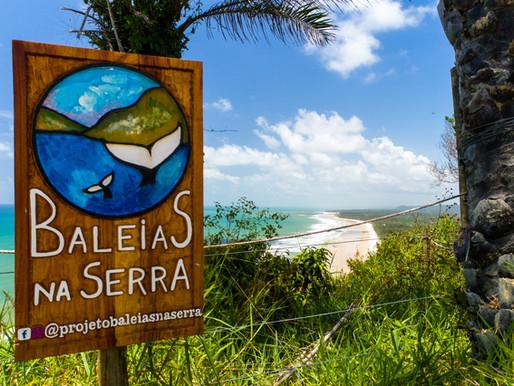 Promoção da disseminação do conhecimento científico e valorização das jubartes em Serra Grande