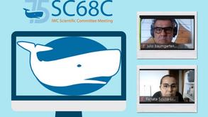 Comitê científico da Delegação Brasileira - Comissão Internacional da Baleia