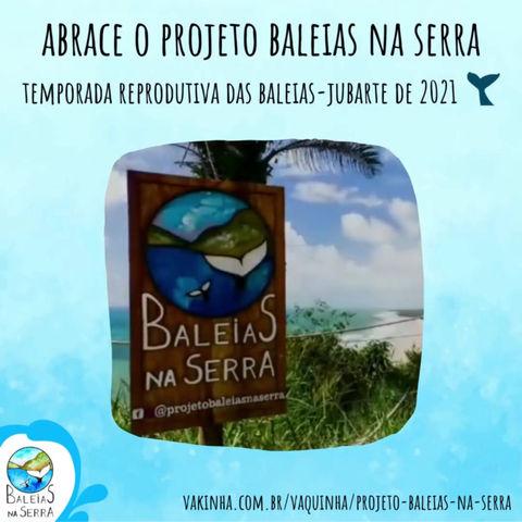Abrace o Projeto Baleias na Serra - Temporada reprodutiva das baleias-jubarte de 2021